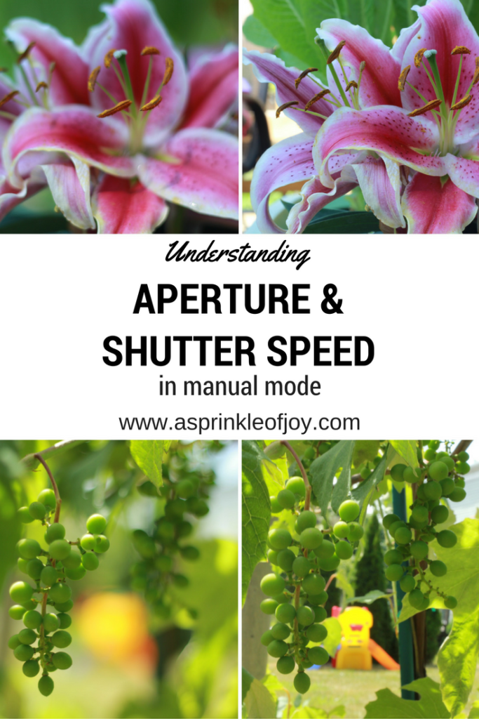 Do you want to improve your photography skills? Does switching to manual make you nervous? Check out the fifth part of this series, which helps show you how aperture and shutter speed work together. You can take amazing pictures in manual!